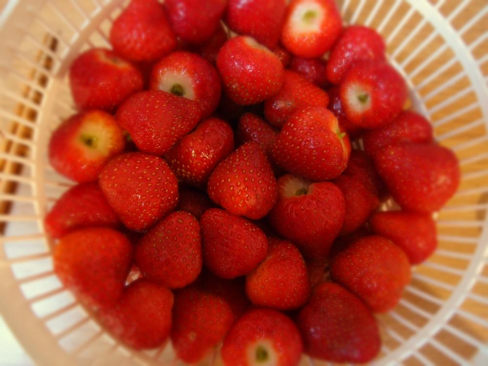 Strawberry_Jam_2